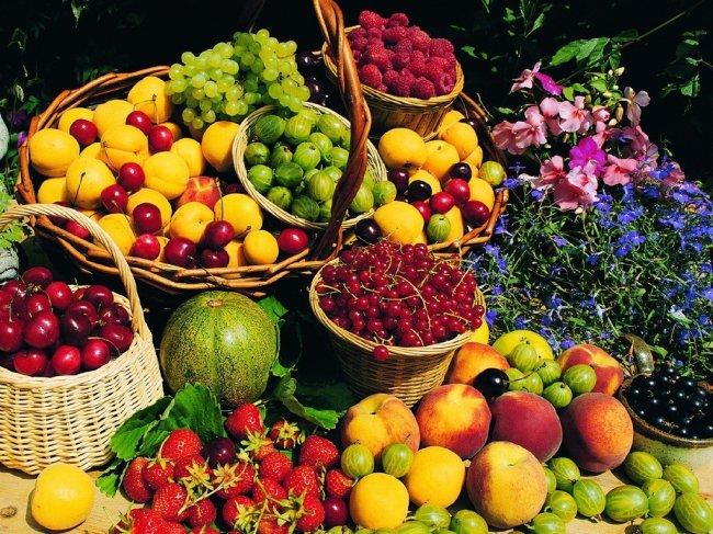 Фруктово-ягодная диета и ее опасность
